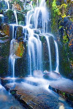 Cascade on Sunbeam Creek, Mount Rainier National Park, Washington USA.