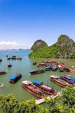 Vietnamese Junks on Halong Bay.