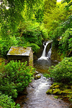 Waterfall and hut in mountain gorge surrounded by bushes and trees. Rydal Hall Ambleside Cumbria England United Kingdom Great Britain.