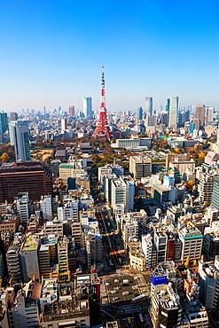 Japan, Tokyo City, Minato Ku, Tokyo Tower, Daimon.