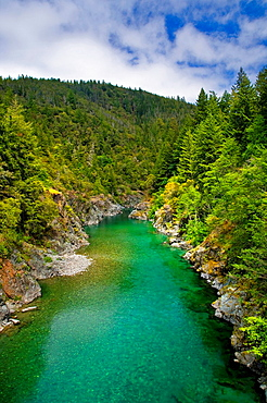 Smith River flowing through forest canyon, Del Norte County, California.