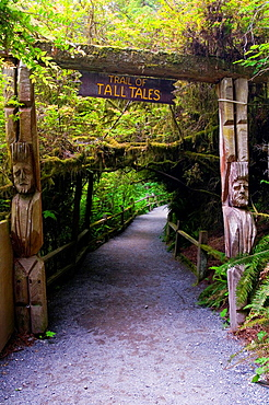 Trail entrance to the Tall Tales section of the Trees of Mystery, Del Norte County, California.