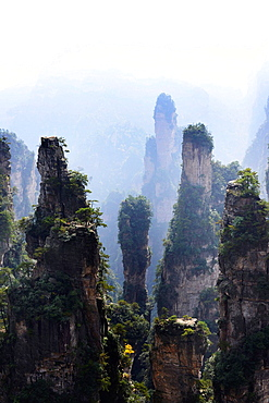 Hunan Zhangjiajie National Forest Park, China