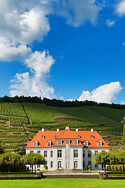 The baroque castle Wackerbarth is a wine-growing estate in the city district Niederlossnitz, Radebeul near Dresden, administrative district Meissen, Saxony, Germany, Europe.