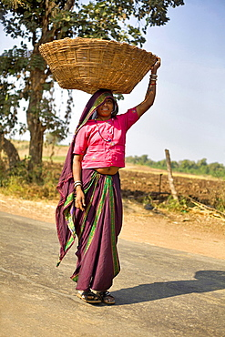 Tribal woman carrying cane basket on her head. Khalwa, Madhya Pradesh, India.