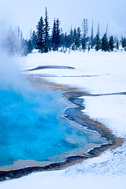 Steaming mineral pool during a snowstorm in Yellowstone National Park, Wyoming, USA.
