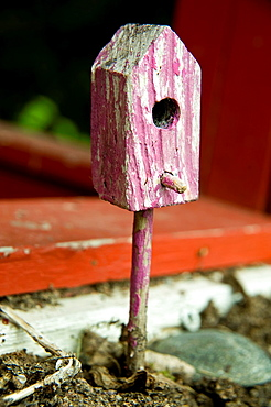 Small house for birds as garden decoraition.