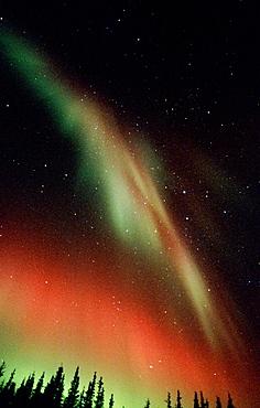 Nothern lights or Aurora borealis, Alaska, USA