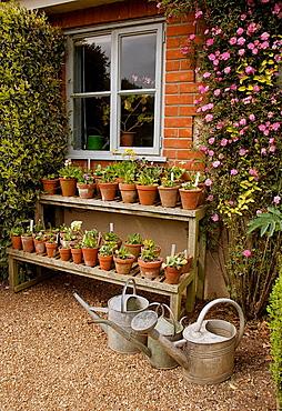 The Old Vicarage Garden, East Ruston, Norfolk.UK