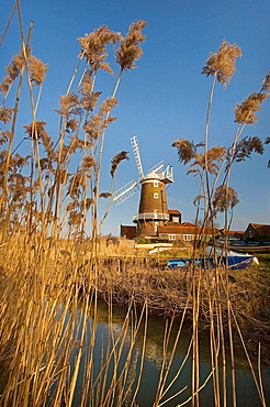 Cley Mill and Reedbed Norfolk Winter