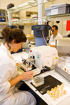 Microtome, Fishing biology laboratory, Polishing and reading of otoliths and gonads, AZTI-Tecnalia, Technological Centre specialised in Marine and Food Research, Pasaia, Gipuzkoa, Euskadi, Spain.