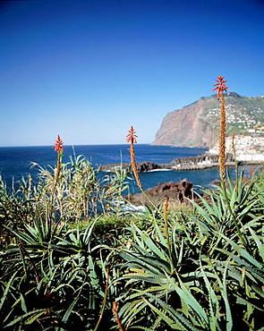 Cabo Girao, Madeira, Portugal