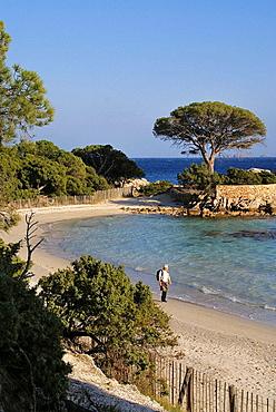 France, Corsica, Natural Area of Tamariccio, at the beach of Palombagio, near Porto Vecchio.