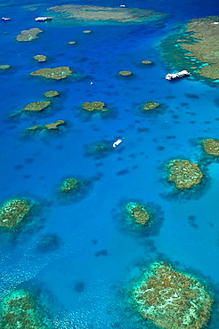 AUSTRALIA - Queensland - NORTH COAST - Cairns Area: The Great Barrier Reef -  Aerial View of Moore Reef