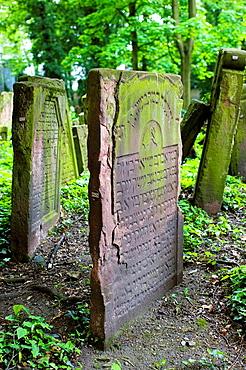 Germany, Hessen, Frankfurt-am-Main, Frankfurt Jewish cemetery, Old Jewish cemetery monuments