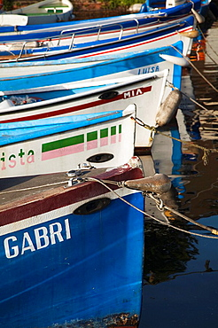 Italy, Veneto, Lake District, Lake Garda, Garda, lakefront fishing boats