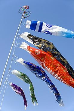 Koinobori, or carp streamers, are seen throughout Japan around Children's Day, May 5th, Japan.