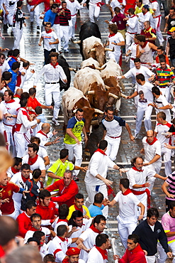 Running of the bulls, San Fermin festival, Pamplona, Navarra (Navarre), Spain, Europe