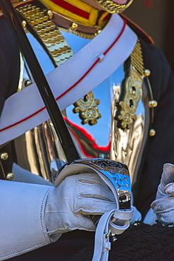 Guardsman, Horse Guards Parade, Whitehall, London, England, United Kingdom, Europe