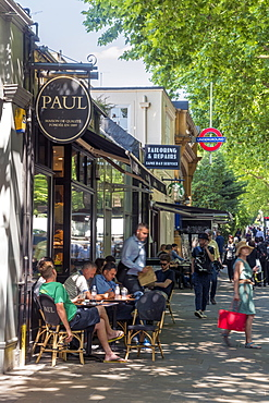 Holland Park Avenue, Holland Park, Kensington and Chelsea, London, England, United Kingdom, Europe