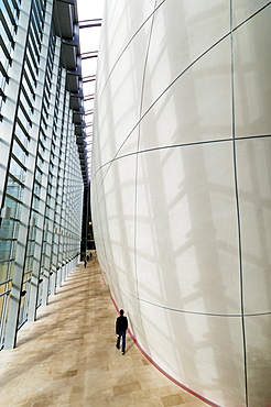 The Cocoon, Natural History Museum, South Kensington, London, England, United Kingdom, Europe