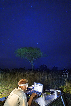 A night time view of a man working at a laptop alongside a Land Rover and tent pitched in a game park.