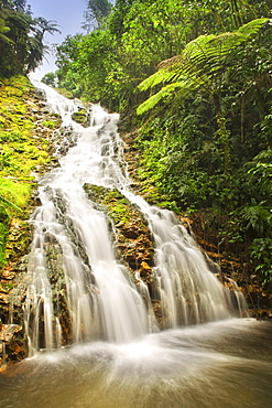 Waterfall in the rainforests of Bwindi Impenetrable National Park in southern Uganda.