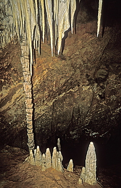 Stalactites, stalagmites and columns at King Solomon's Cave in the Mole Creek Karst National Park, the north, Tasmania, Australia, Pacific