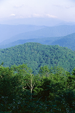 Looking over the Appalachian mountains from the Blue Ridge Parkway in Cherokee Indian Reservation, North Carolina, United States of America (U.S.A.), North America