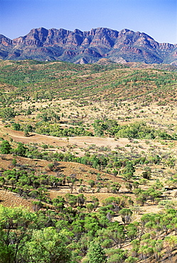 Looking towards the eastern escarpment of Wilpena Pound, a huge natural basin in the Flinders Ranges National Park, South Australia, Australia, Pacific