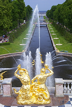 Peterhof Fountains of the Grand Cascade and gardens in summer, Petrodvorets, St. Petersburg, Russia, Europe