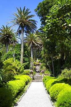 Neptune's Steps, Abbey Gardens, Isle of Tresco, Isles of Scilly, United Kingdom, Europe