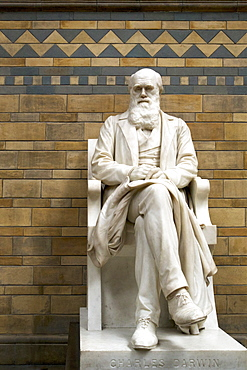 Statue of Charles Darwin, Natural History Museum, South Kensington, London, England, United Kingdom, Europe