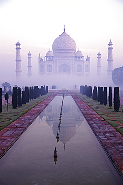 Taj Mahal at dawn, UNESCO World Heritage Site, Agra, Uttar Pradesh, India, Asia
