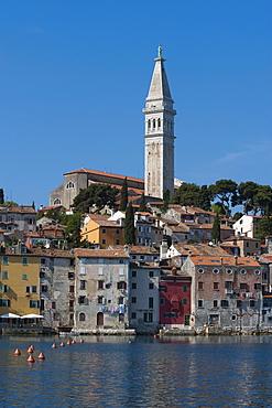Old town with Sv. Eufemia church, Rovinj, Istria, Croatia, Europe