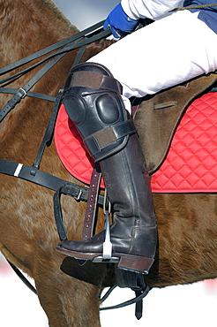 Polo player on horseback, Snow Arena Polo World Cup 2010 polo tournament, Kitzbuehel, Tyrol, Austria, Europe