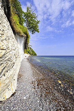 Gravel beach and chalk cliffs on the Baltic Sea, Nationalpark Jasmund national park, Ruegen island, Mecklenburg-Western Pomerania, Germany Europe