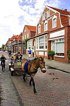 Horse and cart, Juist, Lower Saxony, Germany, Europe