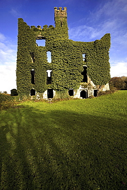 Menlo Castle ruin, County Galway, Republic of Ireland, Europe