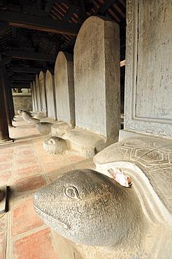 Steles on stone turtles, Temple of Literature, Van Mieu, Hanoi, Vietnam, Southeast Asia