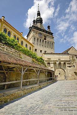 Clock tower, old town, UNESCO World Heritage Site, Sighisoara, Romania, Europe