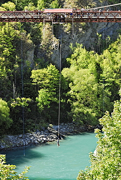 Bungee-jumping from the historic suspension bridge over the Kawarau River, Arrowtown, South Island, New Zealand