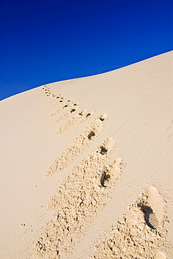 Footprints in the gypsum dunes of White Sands National Monument, New Mexico, USA, America