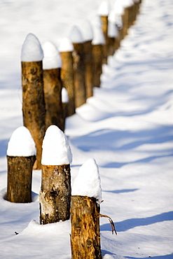 Fence covered with fresh snow