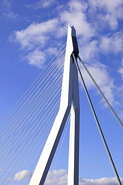 Cable-stayed bridge, bridge pier, pylon, Erasmus Bridge, Erasmusbrug, Rotterdam, Kop van Zuid, Netherlands, Europe