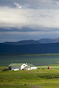 Farm, Myvatn, Iceland, Europe