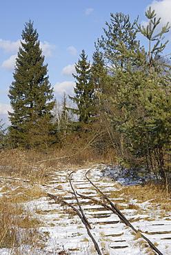 Tracks of a narrow-gauge railway for transporting peat, Stammbecken Moor, near Rosenheim, Bavaria, Germany, Europe