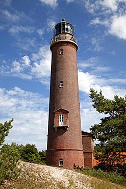 Lighthouse at Darss, Nationalpark Vorpommersche Boddenlandschaft national park, Fischland-Darss-Zingst peninsula, Mecklenburg-Western Pomerania, Germany, Europe