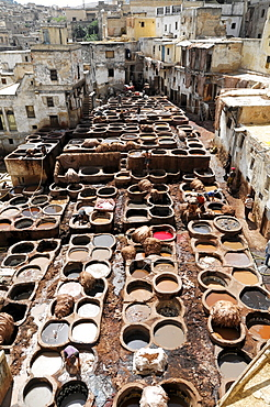 Workers, Tanner's Quarter or Dye Pits of Chouwara in Fez El Bali, Medina, a UNESCO World Heritage Site, Fez, Morocco, Africa