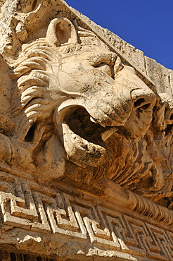 Gargoyle in the shape of a lion head at the archeological site of Baalbek, Unesco World Heritage Site, Bekaa Valley, Lebanon, Middle East, West Asia